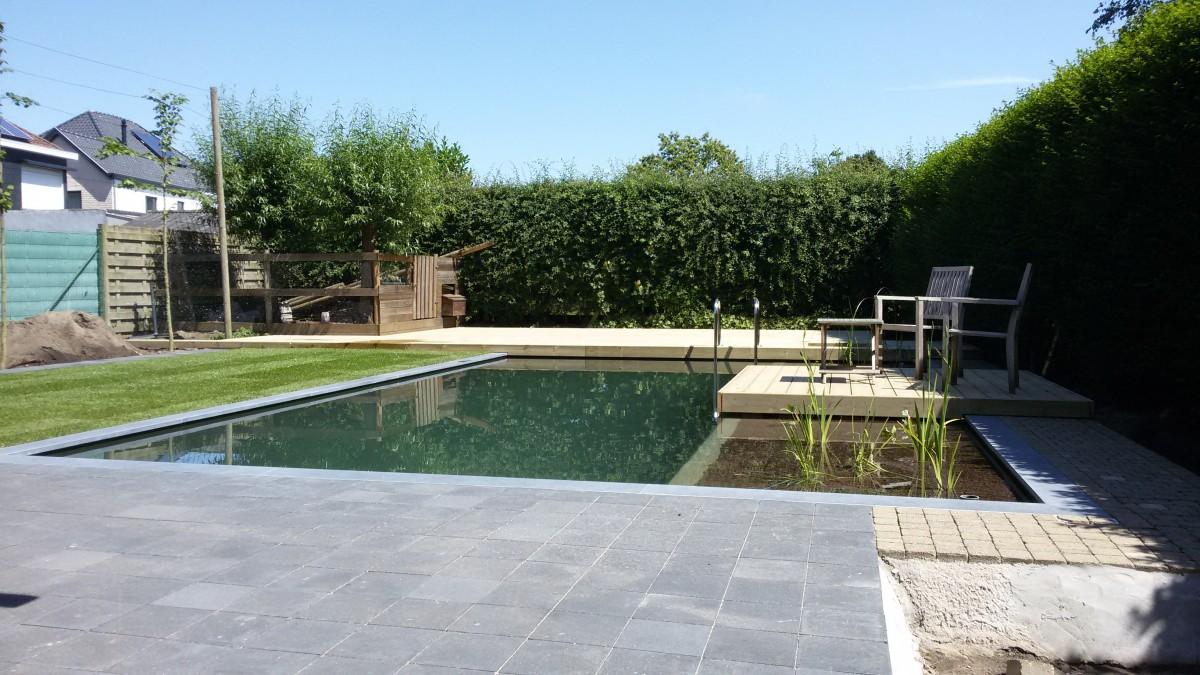 Vijver en zwemvijver in polyester ontwerp aanleg tuinen for Aanleg zwemvijver
