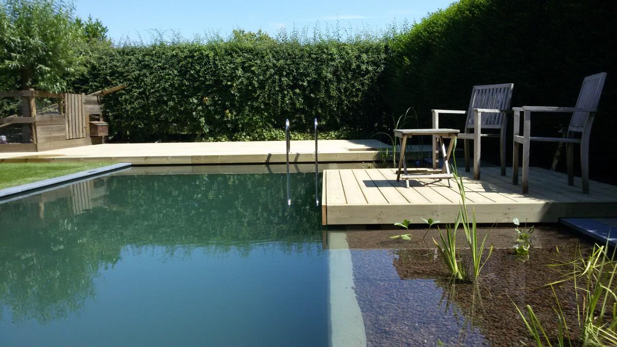 vijver en zwemvijver in polyester ontwerp aanleg tuinen